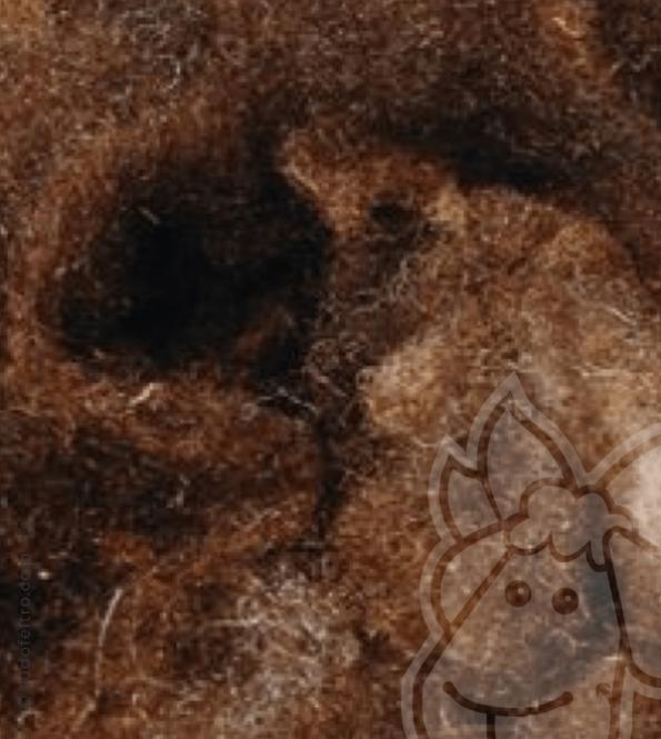 Washed Wool Locks - BROWN